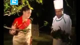 Ek nari amay jonmo dilo.Uploded by Musa Utsho. By Brikko manob, Humayun Ahmed Drama.