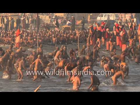 Bathing, praying crowds of Hindus at their largest religious gathering