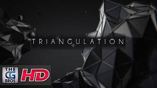"CGI 3D Animated Short: ""TRIANGULATION""  - by Vladimir Vlasenko"
