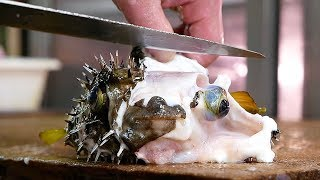 Japanese Street Food - PUFFERFISH Puffer Fish Okinawa Seafood Japan