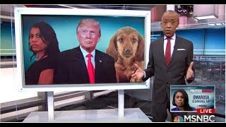 WATCH AL SHARPTON HUMILIATE HIMSELF WHILE TRYING TO BASH TRUMP!