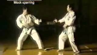 This is the Real Power of Karate