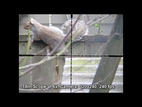 DIY Scope Cam for FX Indy (or any other PCP airgun)