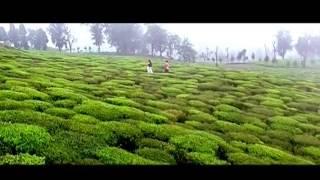 bengali move tor nam