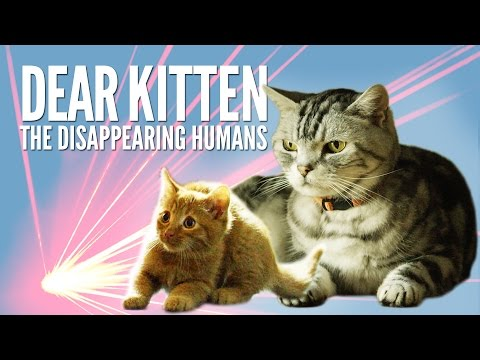 Dear Kitten The Disappearing Humans – Purina® Friskies