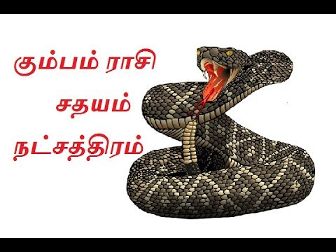 Xxx Mp4 கும்பம் ராசி சதயம் நட்சத்திரம் Kumba Rasi Sathayam Natchatram 3gp Sex