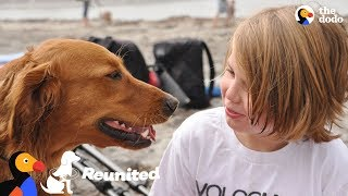 Surfing Dog Reunites With Boy That He Helped Years Ago | The Dodo