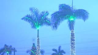 Sarasota, FL Overnight Storm With Holiday Decorations - 12/14/2018