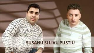 Download Susanu si Liviu Pustiu - Tu romanca , eu tigan