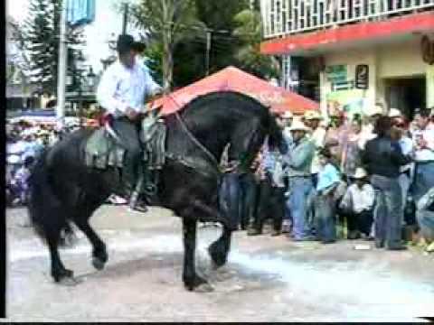 BAILE DE CABALLOS EN CUAUTLA No 4