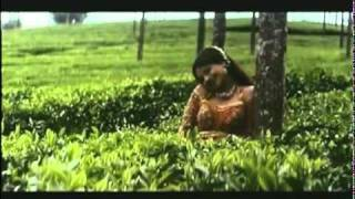 Ayesha, Mithun Suraj 1997 Aage Pyar Peechhe Pyar    YouTube