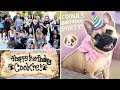 Download Video Download My Dog's EPIC Birthday Party!!!! 3GP MP4 FLV
