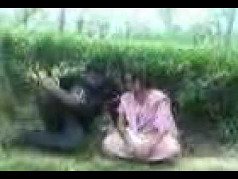 Bangladesh noity girl