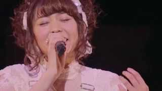 Aki Toyosaki - Patapa (Live)