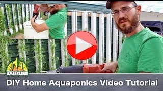 How to Build a Home Aquaponics System
