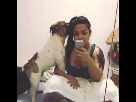Olhar que o cachorro faz na Mulher Melancia