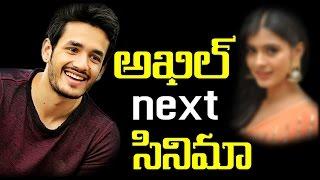 Akhil Next Cinema    Akkineni   Nagarjuna Son   Naga Chaitanya  #Telugu Gossips