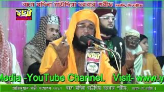 মাওলানা গাজী রুহুল আমিল জালালী L Gaji Rohul Amin Jalali | মৃধা HD ভিডিও