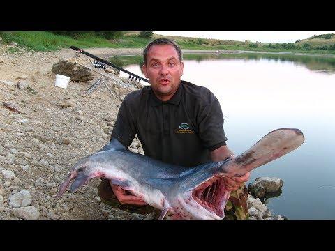 рыбалка в крыму на ставках