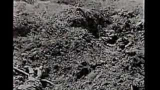 STORIA DEL NOVECENTO 02 1914 campi di battaglia