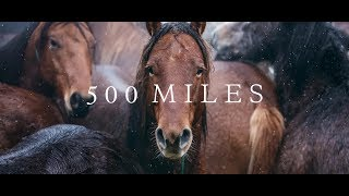 500 Miles - The Story of Ranchers and Horses (2017)