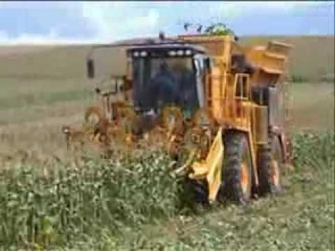 Sweere Oxbo 2470 Sweet Corn Harvester