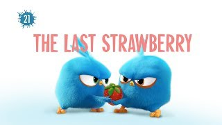 Angry Birds Blues | The Last Strawberry - S1 Ep21 #NEW