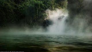 আমাজনে ফুটন্ত নদীর সন্ধান , মানুষ প্রানি যেই নামুক সাথে সাথে সিদ্ধ হয়ে যায়