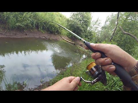 ловля рыбы на лесных речках видео