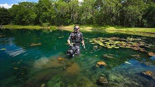Treasure Hunting Subdivision Pond with Alligators and BIG Fish!! (Underwater Surprise)