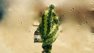 Le Sahara comme si vous y étiez 2 الصحراء كأنكم هناك