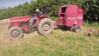 Baling Hay   MF375