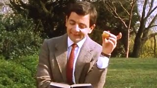 Summery Bean | Funny Clips | Mr Bean Official