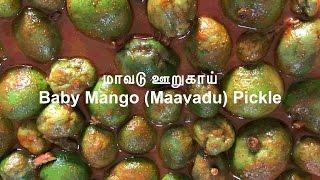 மாவடு ஊறுகாய் | Maavadu Pickle