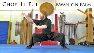 Learn Kung Fu | Choy Li Fut Goddess of Mercy form