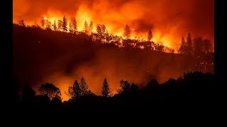 CALIFORNIA IS BURNING: Horrific images from celebs as they fend off wildfires