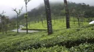 VALPARAI TO ATHIRAMPALLY FOREST ROUTE VIDEOS