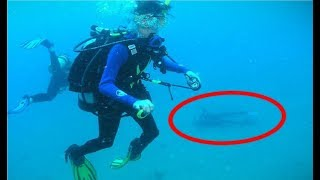 Terrifying and CREEPY Diving Stories