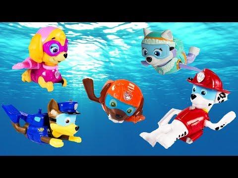 Xxx Mp4 Paw Patrol Paddling Pups Swim In Barbie Dog Pup Pool Learn Colors Education 3gp Sex