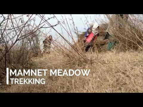 Xxx Mp4 Trekking To Mamnet Meadow Girls 3gp Sex