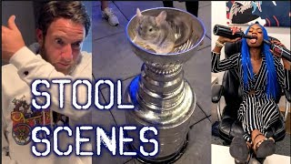 Chinchillas In The Stanley Cup + The Return Of Tiko Texas - Stool Scenes 215