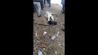 فيديو مؤثر يقشعر له الأبدان😢😲  شاهد.. البحر يلفظ جثة حراق من شاطىء تنس