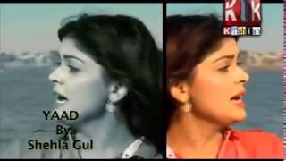 (Shehla Gul )  Yaad  Song..