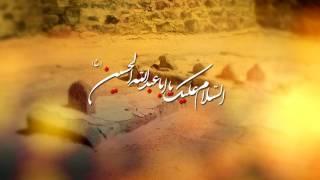 Bhai Bhai Pukarti Rahi Main | Mir Hasan Mir | New Noha 2016-17/1438 [HD]