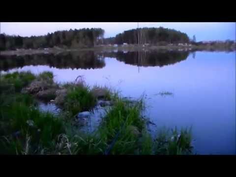 михалыч рыбалка видео все выпуски