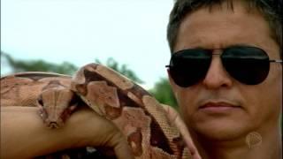 O Rei das Serpentes: conheça o homem que doma as cobras mais venenosas do Brasil