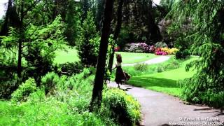 Jaadu Teri Nazar  Full Video Song  Darr  ft' Shahrukh Khan, Juhi Chawla Blu Ray HD 1080p   YouTub