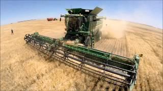 Kealandi Harvest II