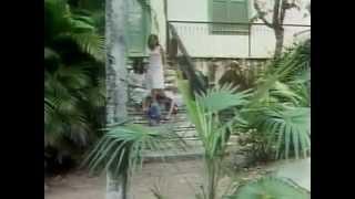 Meu Pé de Laranja Lima (1970)