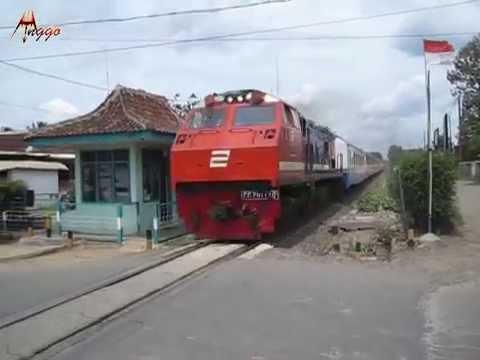 High Speed Limex Sriwijaya Train